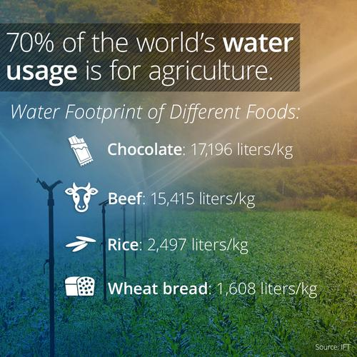 Agricultural water usage